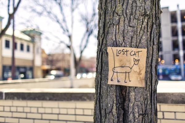 Adwords Tree View